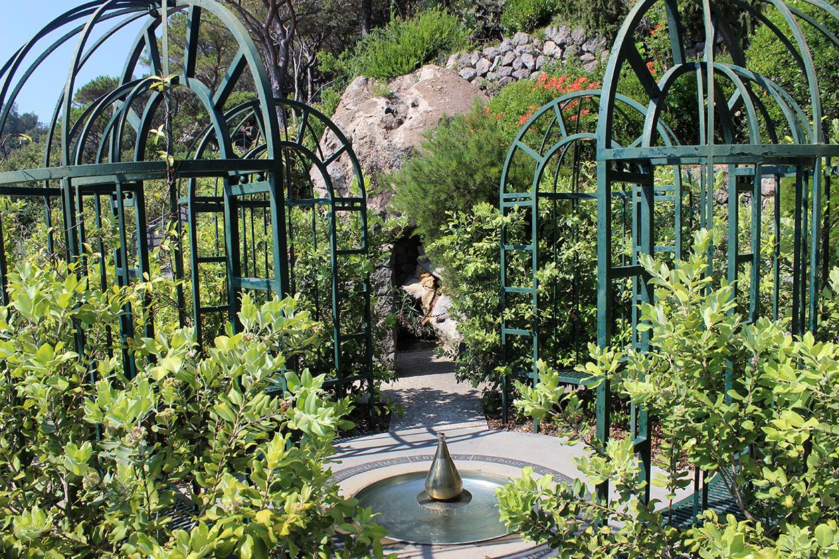 Giardini la mortella fiavet campania basilicata - Giardino la mortella ...